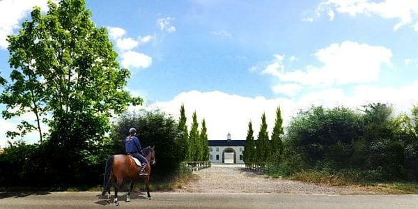 Orange Tree Stables